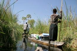 Mokorofahrt - Okavango Delta - Botswana
