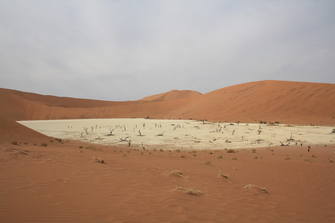 Namibia Gruppenreise - Deadvlei- Namib-Naukluft-Nationalpark - Namibia