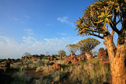 Namibia Gruppenreise - Namibia Geführte Reise - Namibia Safari - Landschaft