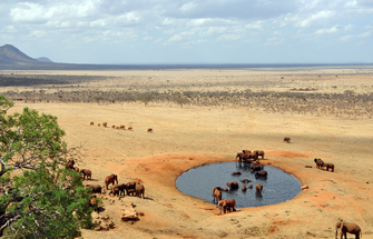 Namibia Geführte Reise - Rundreise durchs Südliche Afrika - Aussicht aufs Wasserloch - Etosha Park