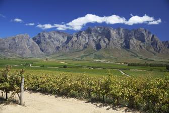 Suedafrika Gruppenreise - Suedafrika Abenteuerreise - Weinland - Stellenbosch - Paarl - Suedafrika