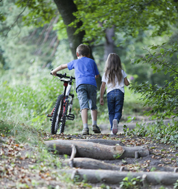 Kinder im Wald - Wanderweg - Neuseeland