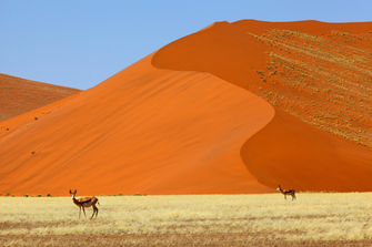Namib Wüste - Naukluft Nationalpark - Namibia