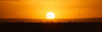Sonnenuntergang im Ziwani Schutzgebiet in Kenia