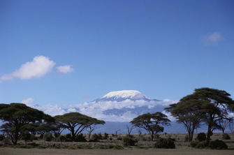 Amboseli Nationalpark mit Blick auf den Mount Kilimanjaro in Kenia