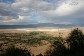 Ngorongoro Waldgebiet von oben in Tansania