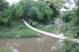 Bücke über den Grumeti River im Grumeti Schutzgebiet nahe des Serengeti Nationalparks in Tansania.