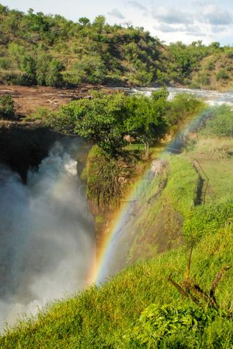 Murchison Falls Nationalpark in Uganda.