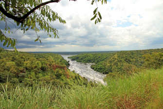 Blick auf den Murchison Falls Nationalpark und den Nil in Uganda.