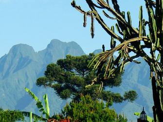 Ruhengeri am Eingang des Volcanoe Nationalparks In Ruanda.