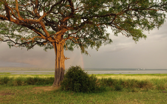 Fahrt von Masindi zum Queen Elizabeth Nationalpark entlang des Lake Alberts in Uganda