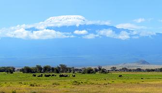 Ankunft am Kilimanjaro Airport und Ausblick auf den Berg in Tansania