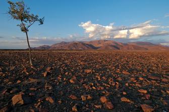 Blick auf das Brandbergmassiv in Namibia