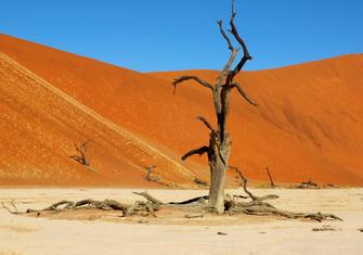 Wanderung durch die Namib Wüste in Namibia