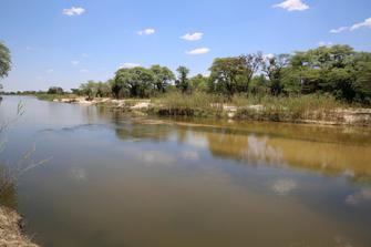 Spaziergang am Okavango Fluss in Botswana