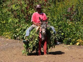 Alltag der Menschen auf den Kapverden