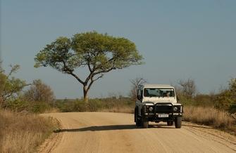 Geländewagen im Krüger Nationalpark in Südafrika