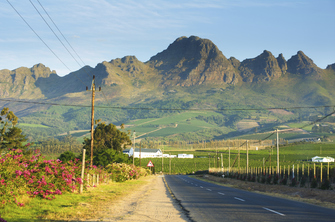 Weinanbaugebiet Stellenbosch in Südafrika
