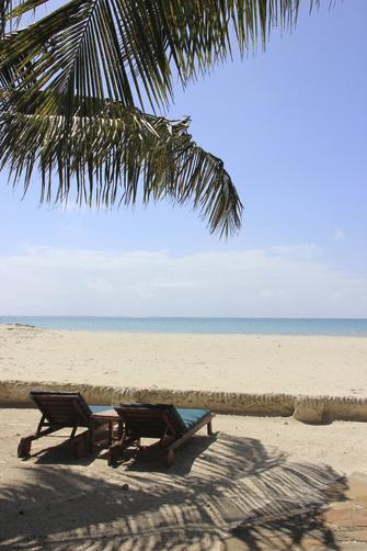 Strand mit Palmen in Mombasa in Kenia