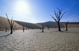 Sossusvlei-Deadvlei - Namib -Namibia
