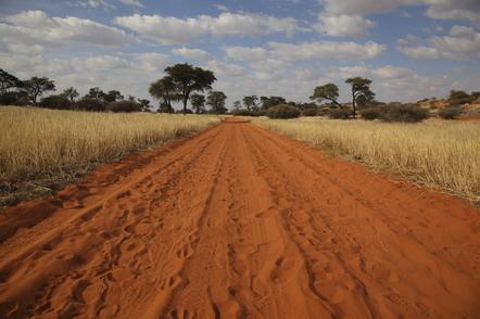 Namibia Gruppenreise - Namibia Suedafrika Botswana Rundreise - Wuestenstrasse - Kalahari