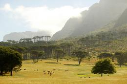 Landschaft - Bonamanzi Game Reserve - Suedafrika